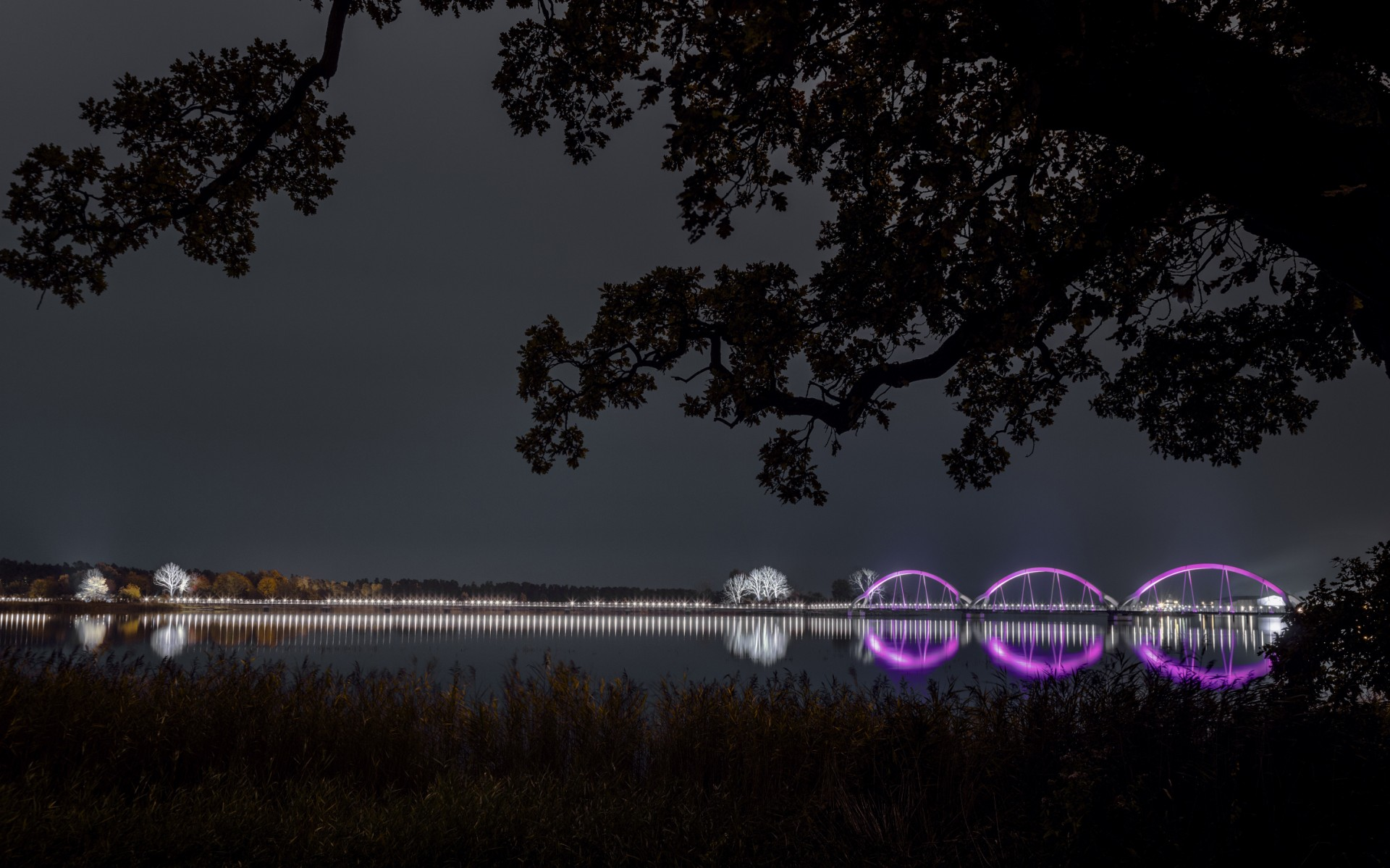 Designers Ljusarkitektur used Lumenpulse LED fixtures to enhance the bridge's landmark status, without impacting the local habitat.