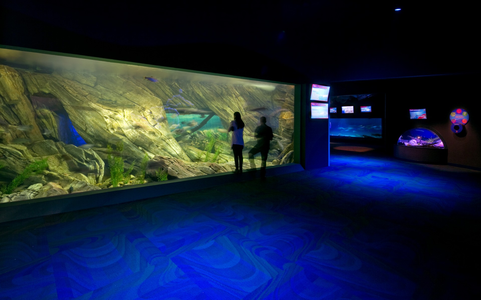The firm chose marine-grade Lumenbeam XLarge luminaires for the aquarium's large feature tanks, opting for tight, focused beams of lights. – Mulvey+Banani International Inc.