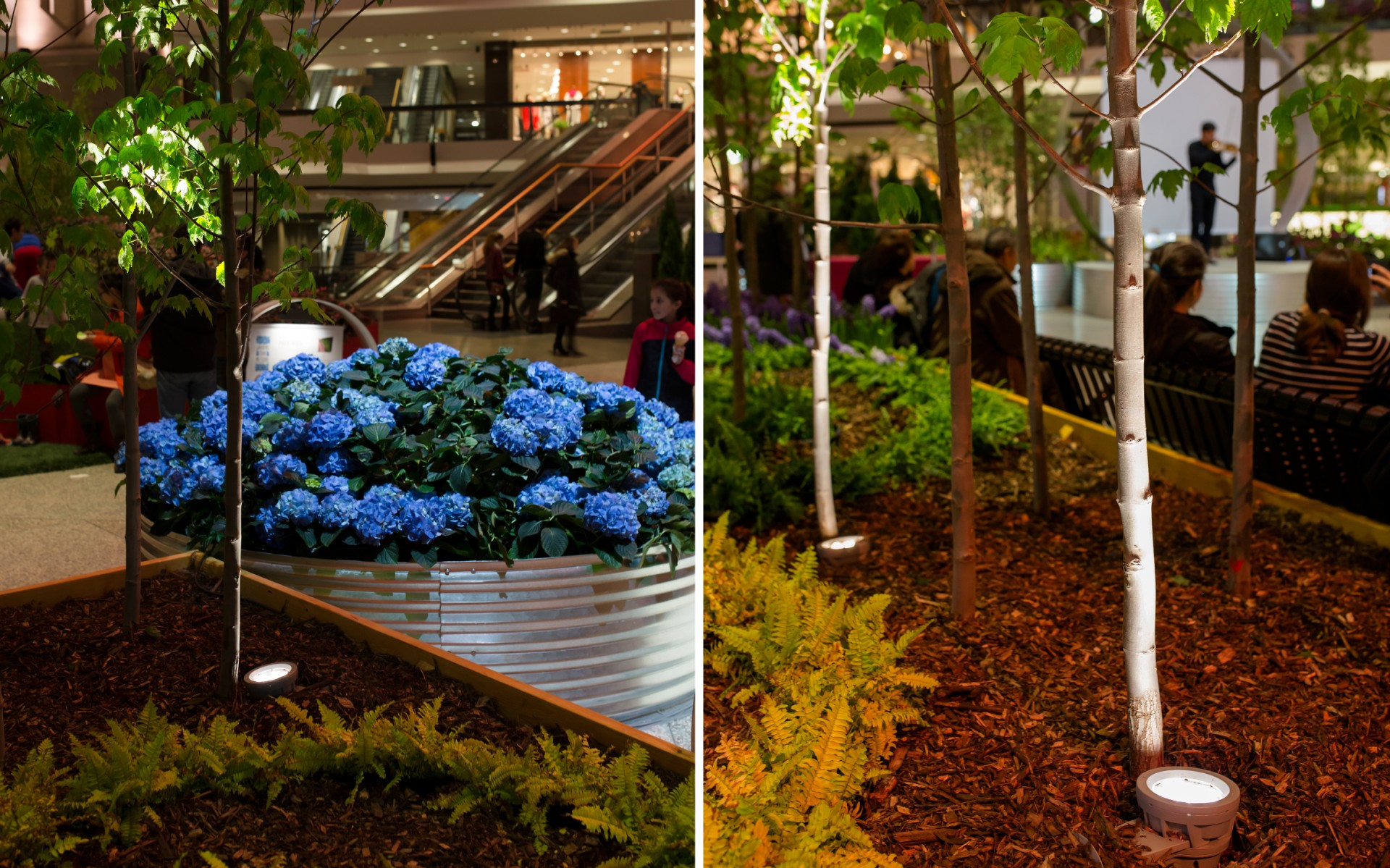 Six custom gardens were lit by a range of Lumenpulse luminaires.