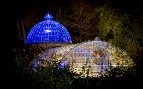 As part of a five-night event, the Swiss Garden at Shuttleworth in Old Warden, UK was lit with Lumenpulse luminaires.
