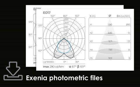 EXENIA photometric files